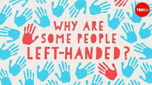 چرا برخی مردم چپ دست هستند؟