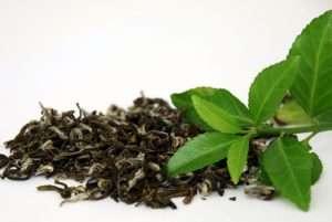 چای سبز