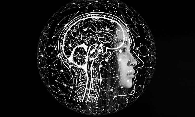 تصویر در مغز یا عضلات، ابتدا چه چیزی را از دست می دهیم؟