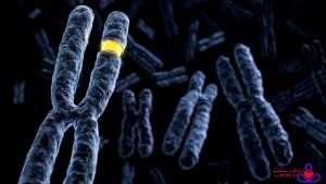 ژنتیک و سرطان