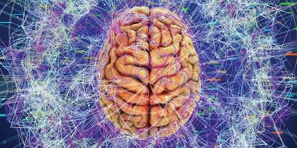 تصویر در مغز انسان و چگونگی متعادل کردن احساس استرس و آرامش